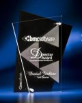Abstract Clear and Black Acrylic Award Employee Awards